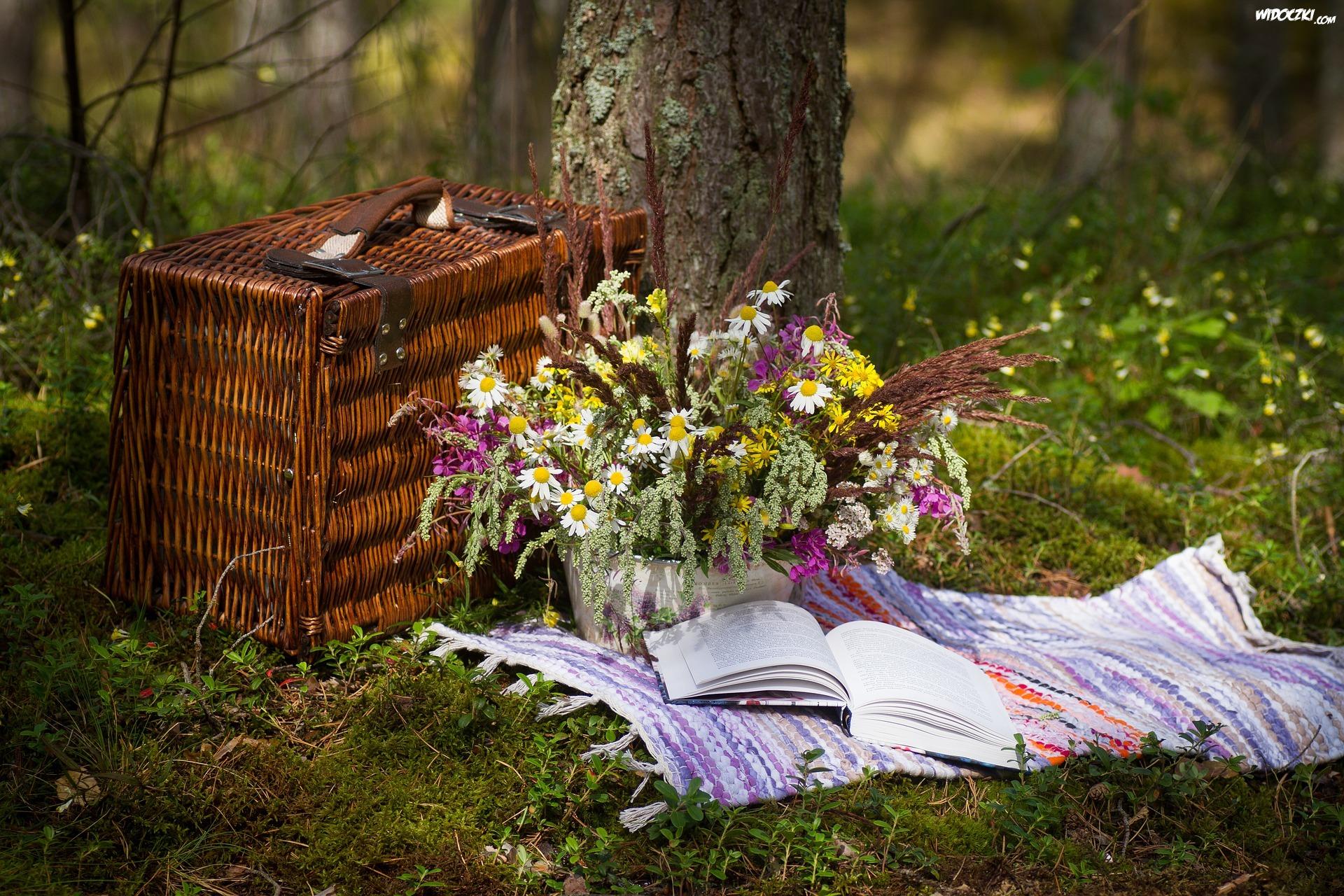 Drzewo, Bukiet, Polne, Kwiaty, Książka, Koszyk, Wiklinowy, Piknikowy
